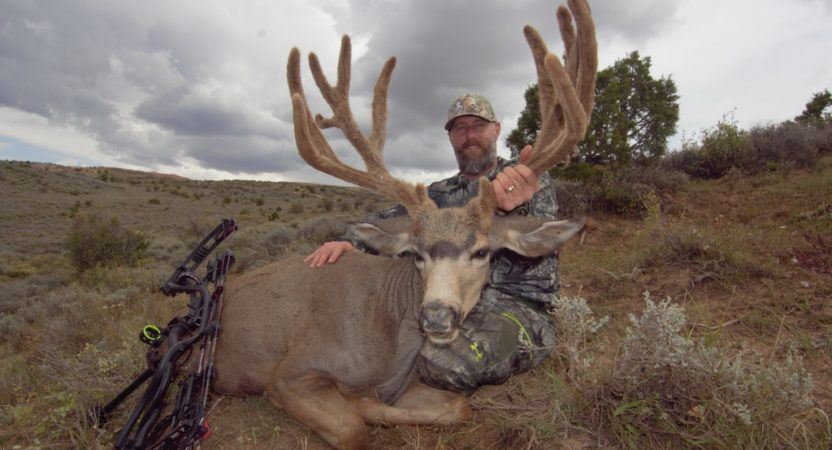 Wyoming Mule Deer Hunting
