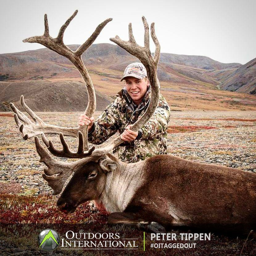 Unguided Caribou Hunt