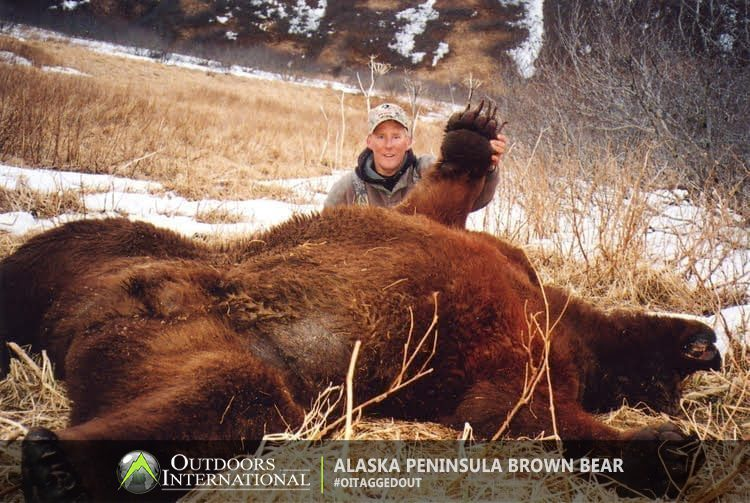 Hunt giant brown bears on the Alaska Peninsula