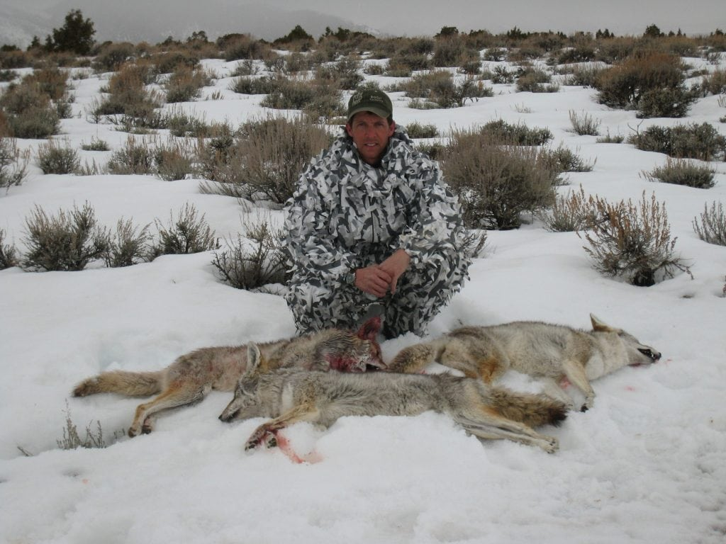 Clay Owens Coyote