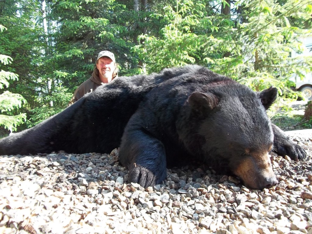 Saskatchewan Black Bear Hunts: Larson Lake Outfitters