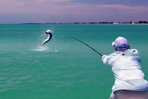 Jumping a tarpon with a fly rod can be a terrifying experience!